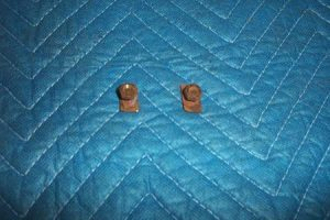 Bowser 575 Lower Stainless Trim Fastener